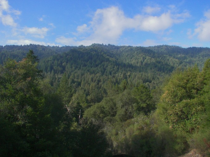 View of Ben Lomond Mtn from back deck